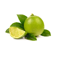 Actus Lime Physio